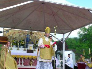 Pèlerinage de Pentecôte 2016 : Le dimanche 15 mai en images