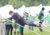 samedi-18-mai-le-bivouac-des-greffiers